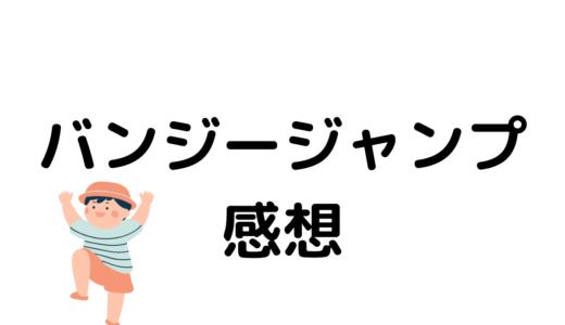 【富士バンジー】バンジージャンプ体験記(飛んだ時のことを詳細に話す)